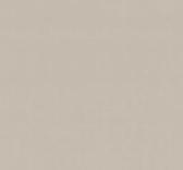 1131 Lacado arena